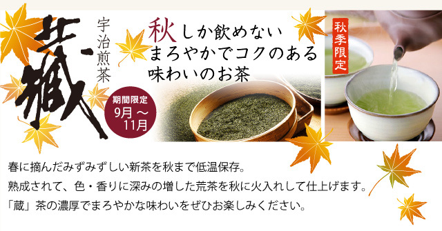 秋しか飲めないまろやかでコクのある蔵出しの緑茶