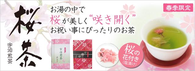 春季限定:桜茶